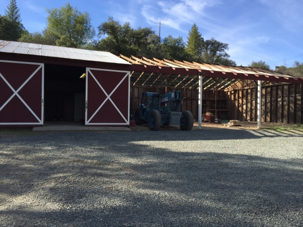 The red shed prior to the renovation.