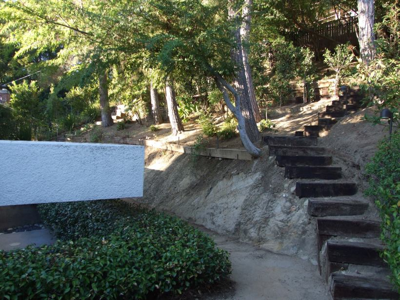 A photo of our old backyard back in Pasadena because I have no new photos to share.
